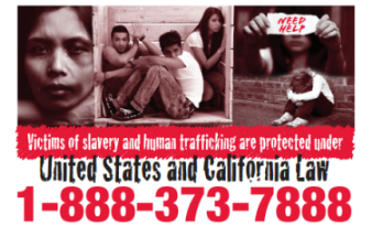 Human trafficking flyer.